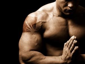 ws_Bodybuilding_1600x1200