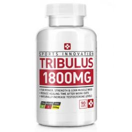 tribulus_5